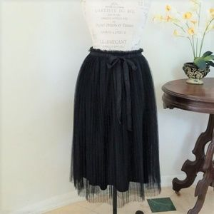 Francesca's Black Pleated Tulle Skirt
